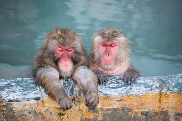 夫婦でお風呂